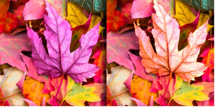 Результат – фото до и после
