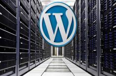 Нюансы выбора хостинга для своего блога на Wordpress: достоинства и недостатки самых популярных
