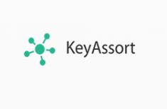 KeyAssort: программа для кластеризации ключевых слов